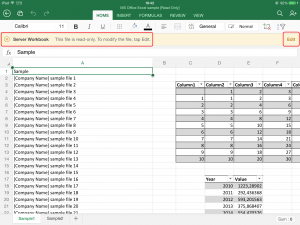 Collaborate_Using_Microsoft_Excel_For_iPad_app_26